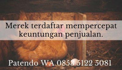 20 Langkah Sukses Menjalankan Bisnis Ayam Petelur   Patendo