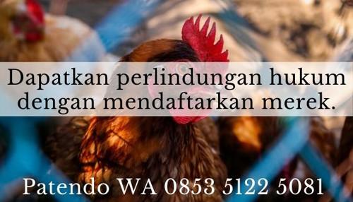 10 Tips Ampuh Jalankan Bisnis Ayam Potong Bagi Pemula ...