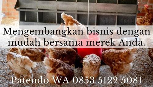 10 Tips Ampuh Jalankan Bisnis Ayam Potong Bagi Pemula