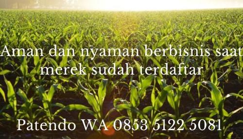 bisnis pertanian4